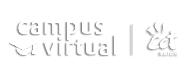 Campus Virtual CCT